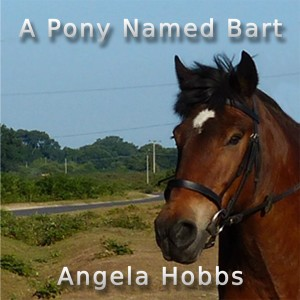 A horse standing in a field - The cover image of the audio book A Pony Named Bart by Angela Hobbs